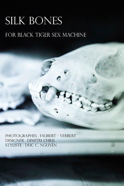 Black Tiger Sex Machine Duc C. Nguyen Faubert-Verbert TRIPTYQUE1