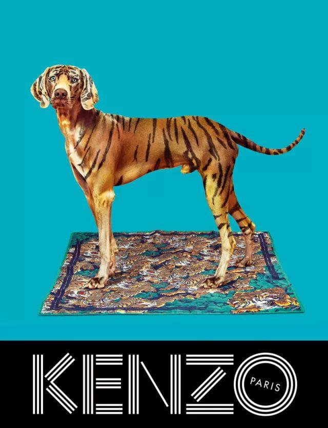 xkenzo-fall-campaign3_result