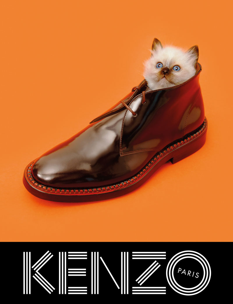 800x1043xkenzo-fall-campaign5.jpg.pagespeed.ic.pr2L_ueG4_