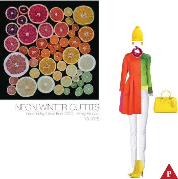 13101$ Neon Winter Outfits Inspired By Citrus Fest – Emily Blincoe