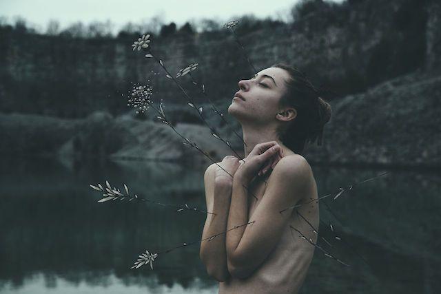 La Faune et la Flore, 2015 Mark Harless @N P for #composition #motion