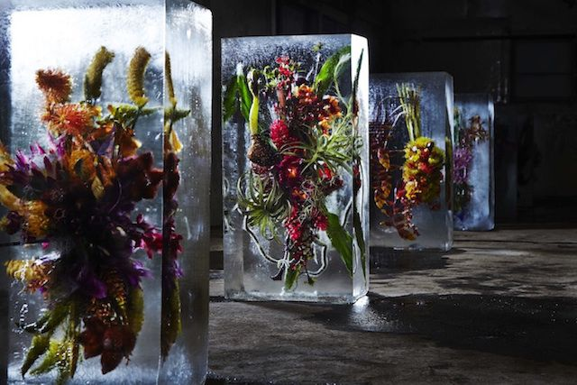 Iced Flowers, 2015 Azuma Makoto @azumamakoto via @Fubiz for #material #color