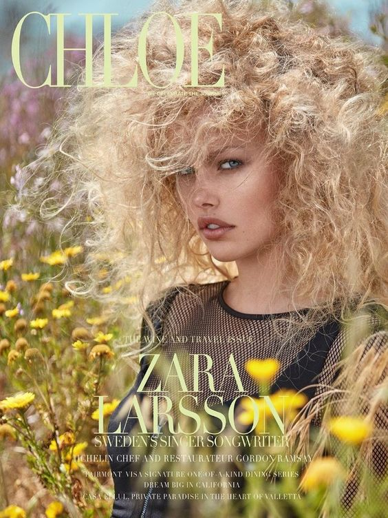 Emma Stern Nielsen @ONE MANAGEMENT by Greg Swales @GregSwales for Chloe @chloe_magazine Summer 2016 #hair #composition